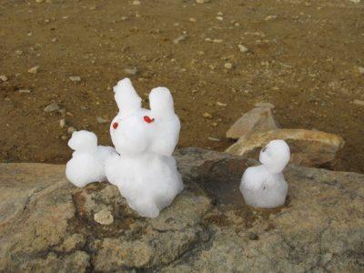 展望台にあった雪うさぎ