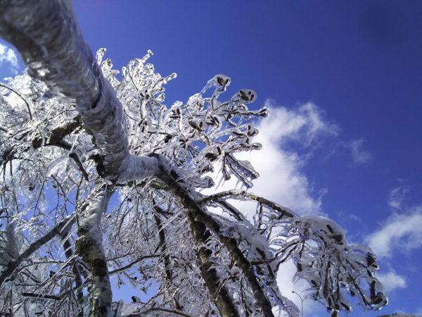 晴天と雨氷1