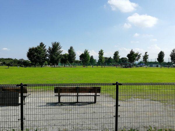 遊戯広場からソフトボール場方面